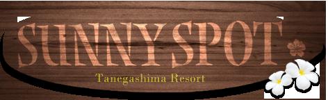 SUNNY SPOT(サニースポット) 【公式サイト】